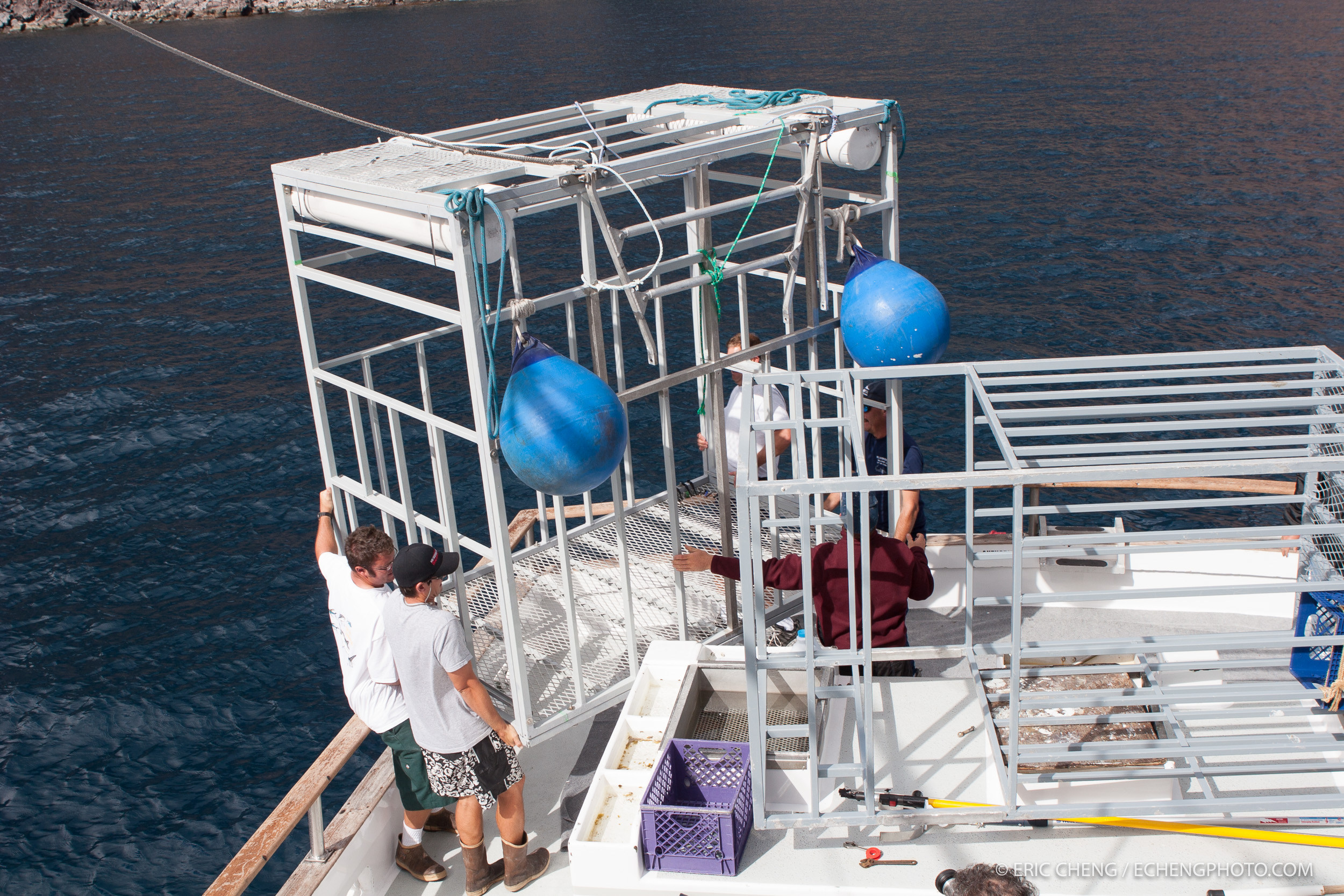 Deploying shark cages in the water