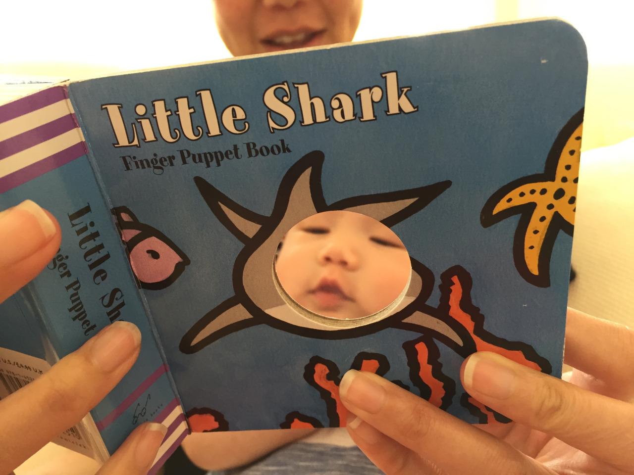 Little shark! Little shark! Little shark! From  Instagram .
