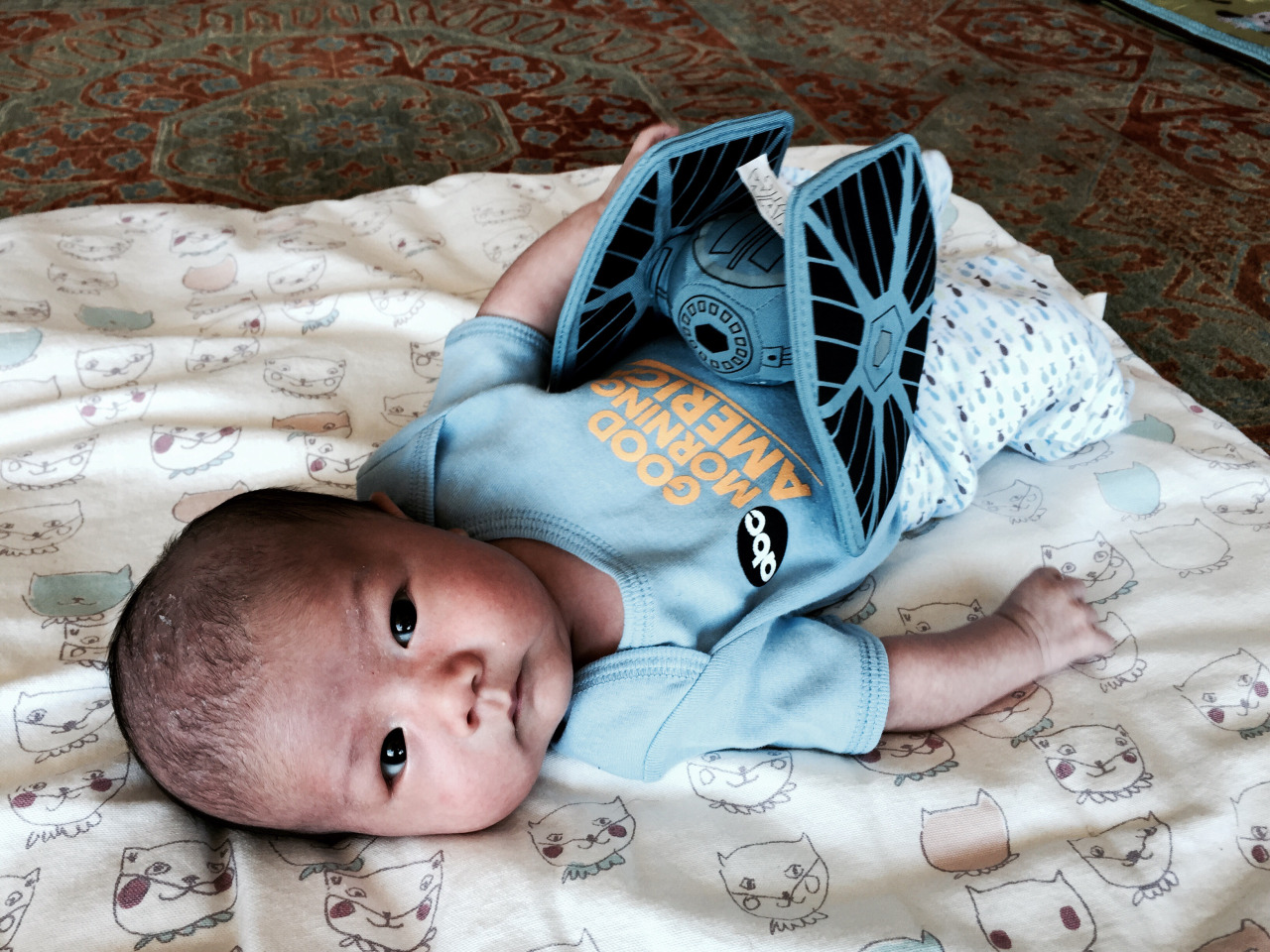 Mako wears pretty much 100% gifted and recycled clothing. Shown here in a Good Morning America onesie sent to us by Maria Stefanopoulos, and tie fighter from Susan Brown.