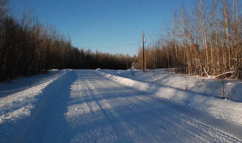 My winter training ground