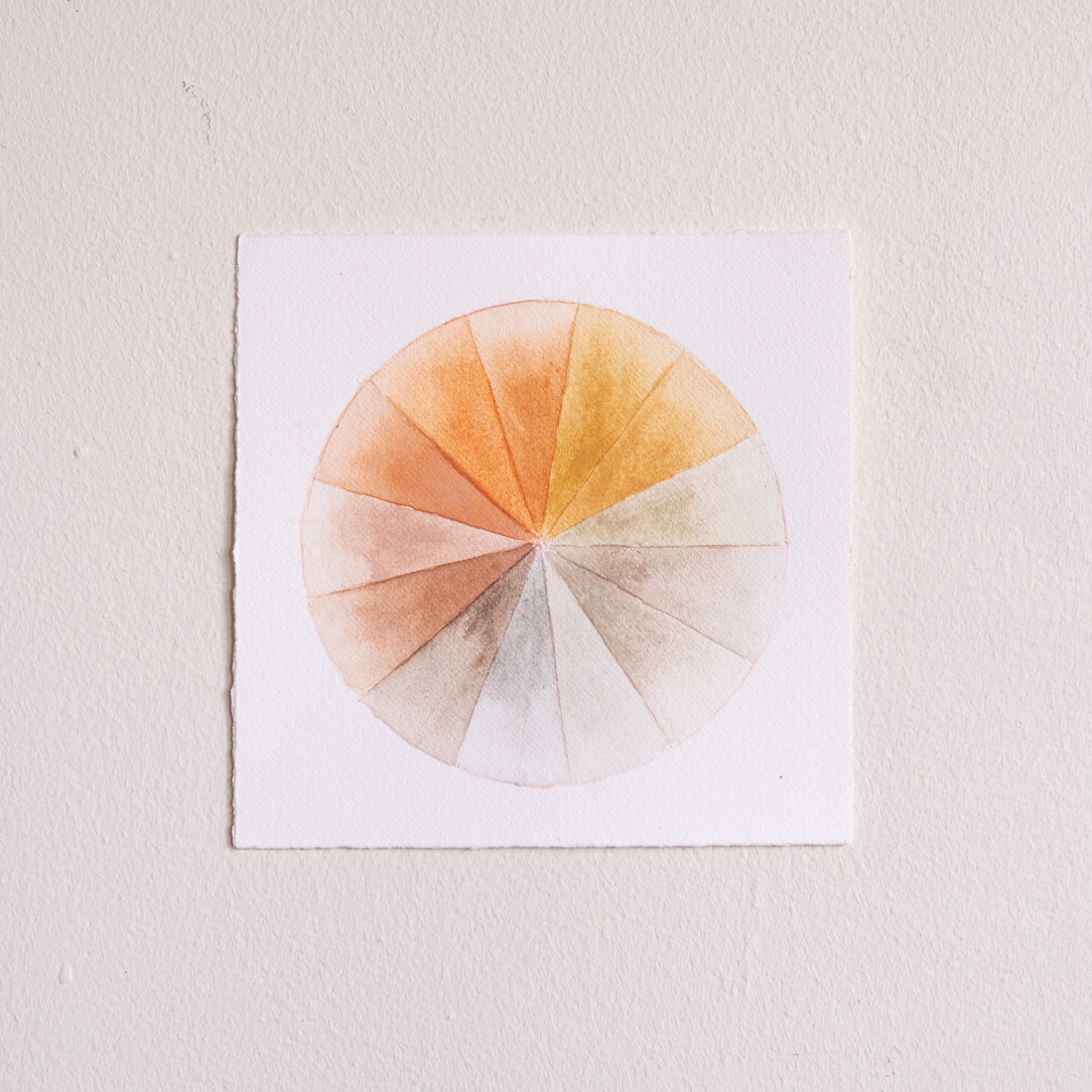 Anakiwi Color Wheel I