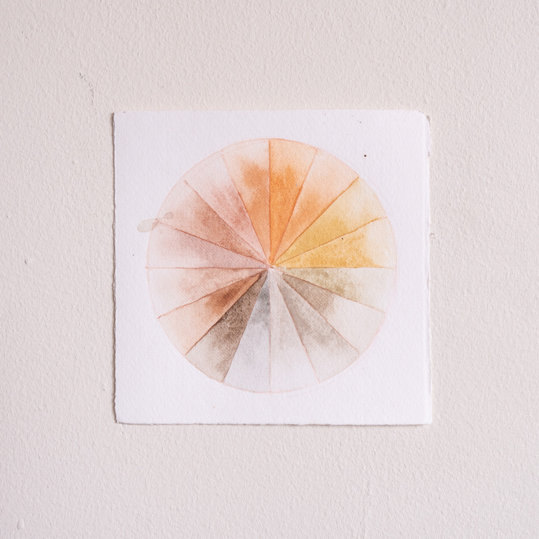 Anakiwi Color Wheel III