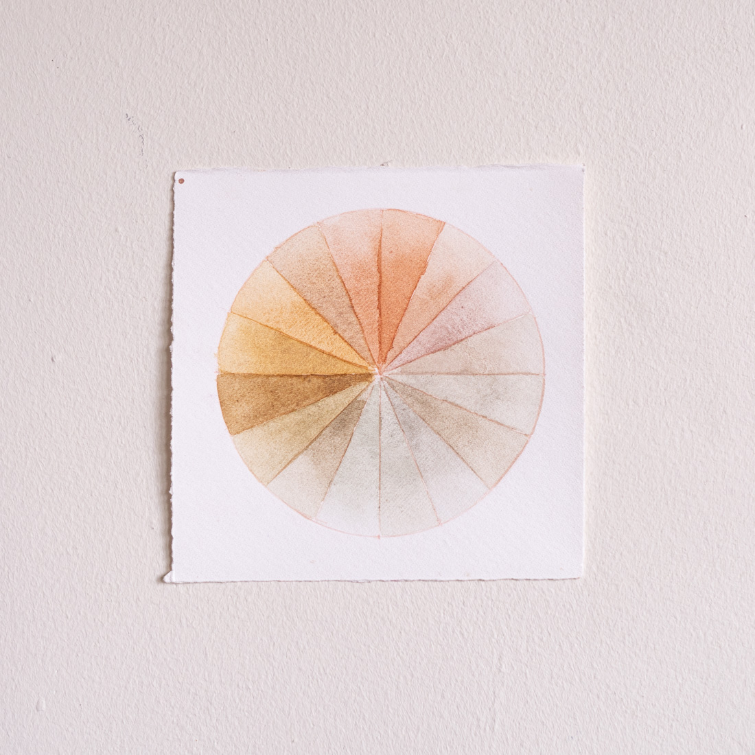 Anakiwi Color Wheel II