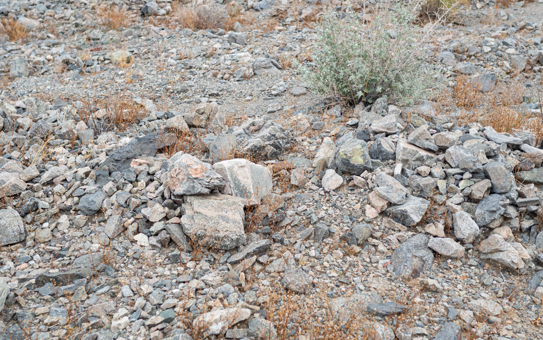 cleghorn-rock-field.jpg