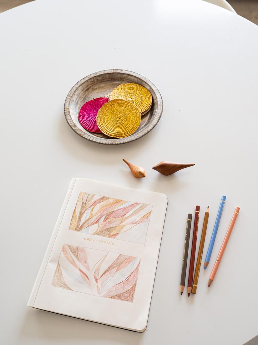 birdline-sketchbook-3.jpg