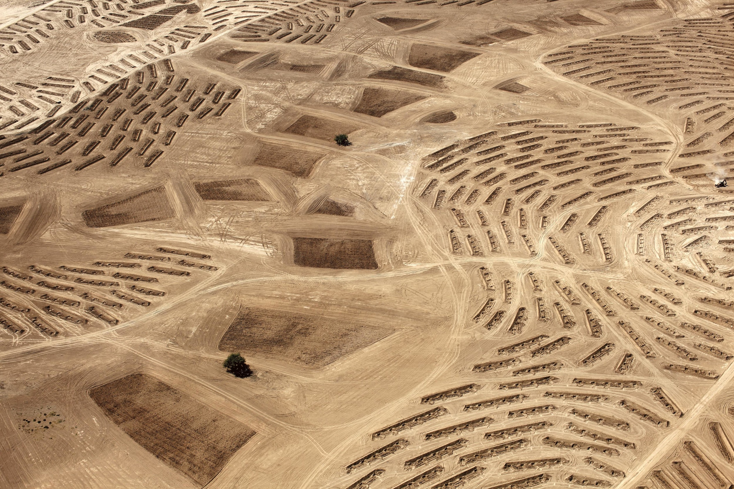 """From   Desert Bloom  by Fazal Shiekh,Steidl, 2015    LATITUDE: 31° 21' 7"""" N / LONGITUDE: 34° 46' 27"""" E      October 9, 2011. Earthwork preparation for the planting of the Jewish National Fund (JNF) Ambassador Forest as part of its afforestation campaign to provide a green belt around the city of Beersheba (Heb., Be'er Shevaʽ/Arabic, Bīr a-Ssabʽ). The JNF is a nongovernmental Zionist organisation founded in 1901 for the purpose of buying land, on behalf of world Jewry, for the foundations of a Jewish state in Ottoman-controlled Palestine. Today the JNF is active in afforestation and presents itself as a """"global environmental leader."""" In the summer of 2010, the homes of the Abu Jāber, Abu Mdīghem, and Abu Freih families, of the al-Tūri tribe, which were on the site surrounding the two remaining trees, were demolished, and the families expelled. The land is currently claimed by the Bedouin community as part of the surrounding area of the unrecognized village of al-ʽAraqīb."""