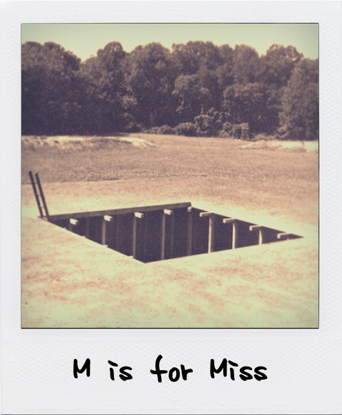 M is for Mary Miss, the American landscape artist and designer whose interest in public art and engagement has prompted collaborations with architects, engineers, scientists, and bureaucrats. M is also for Sylvain Meyer.