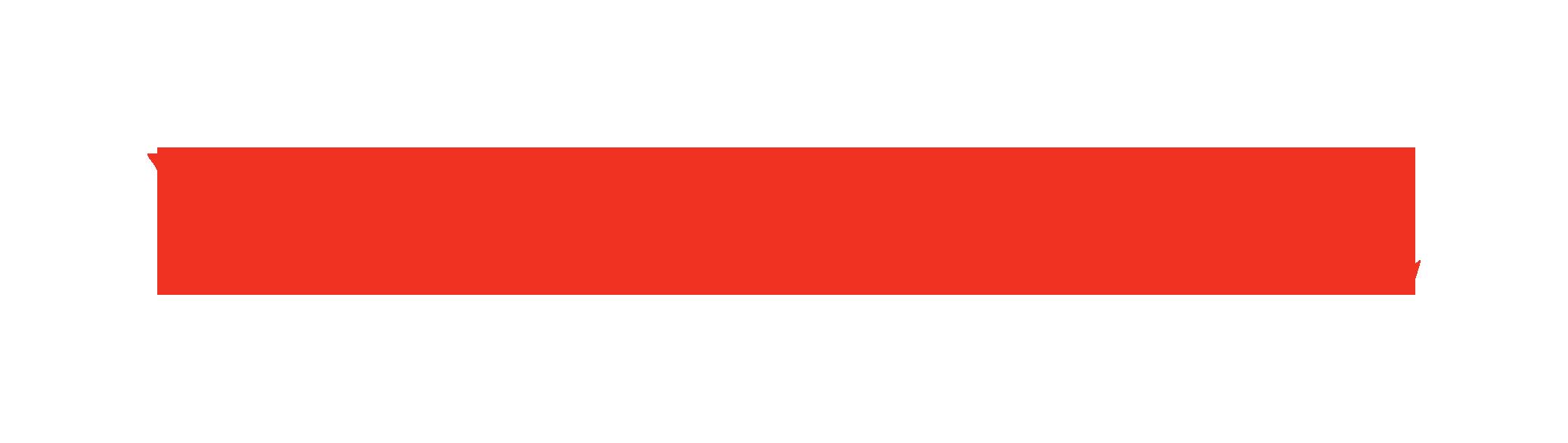 VIKINGLINE_logotype RED-RGB.png