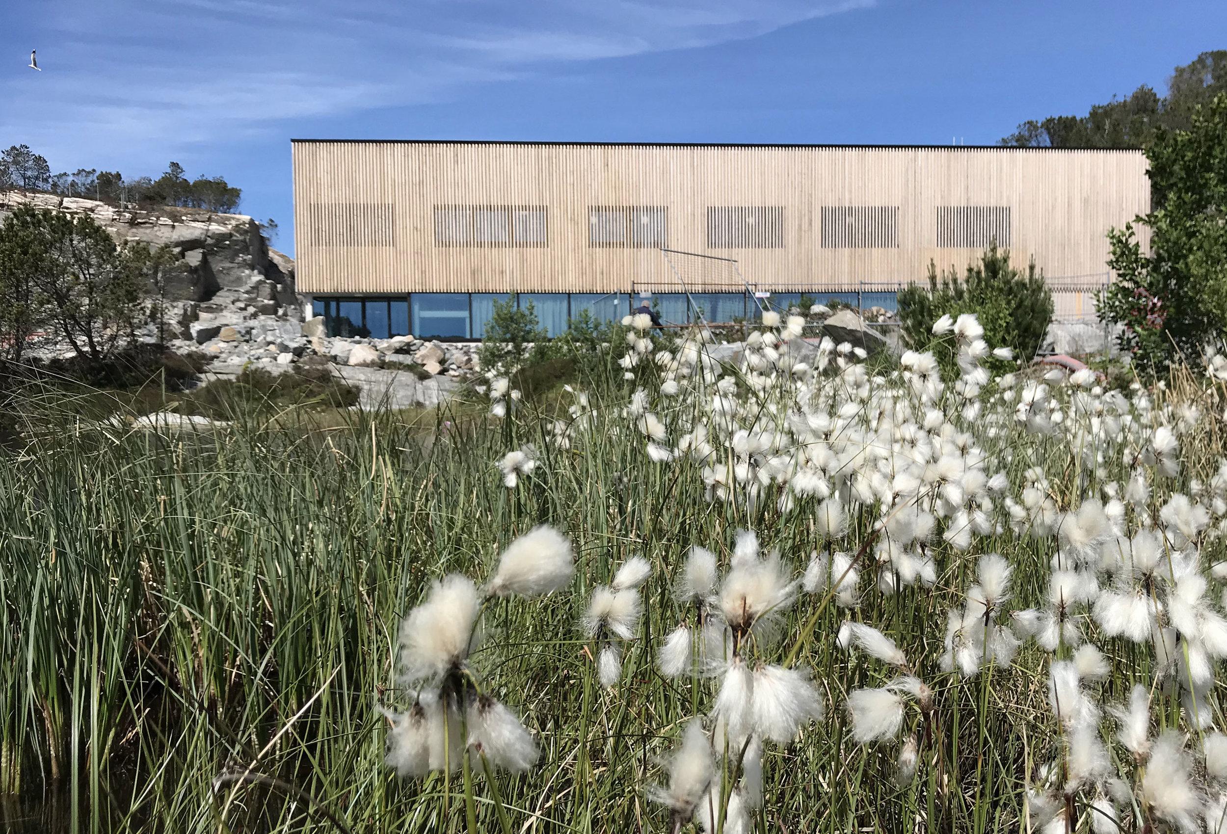 Hjeltefjorden Arena fasade front.jpg