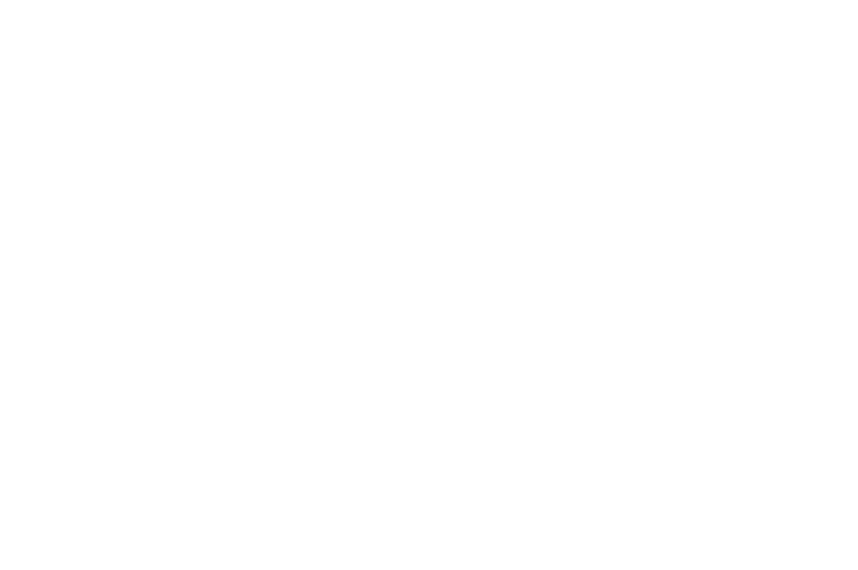 2017  - Nevada City Film Festival - OFFICIAL SELECTION.png