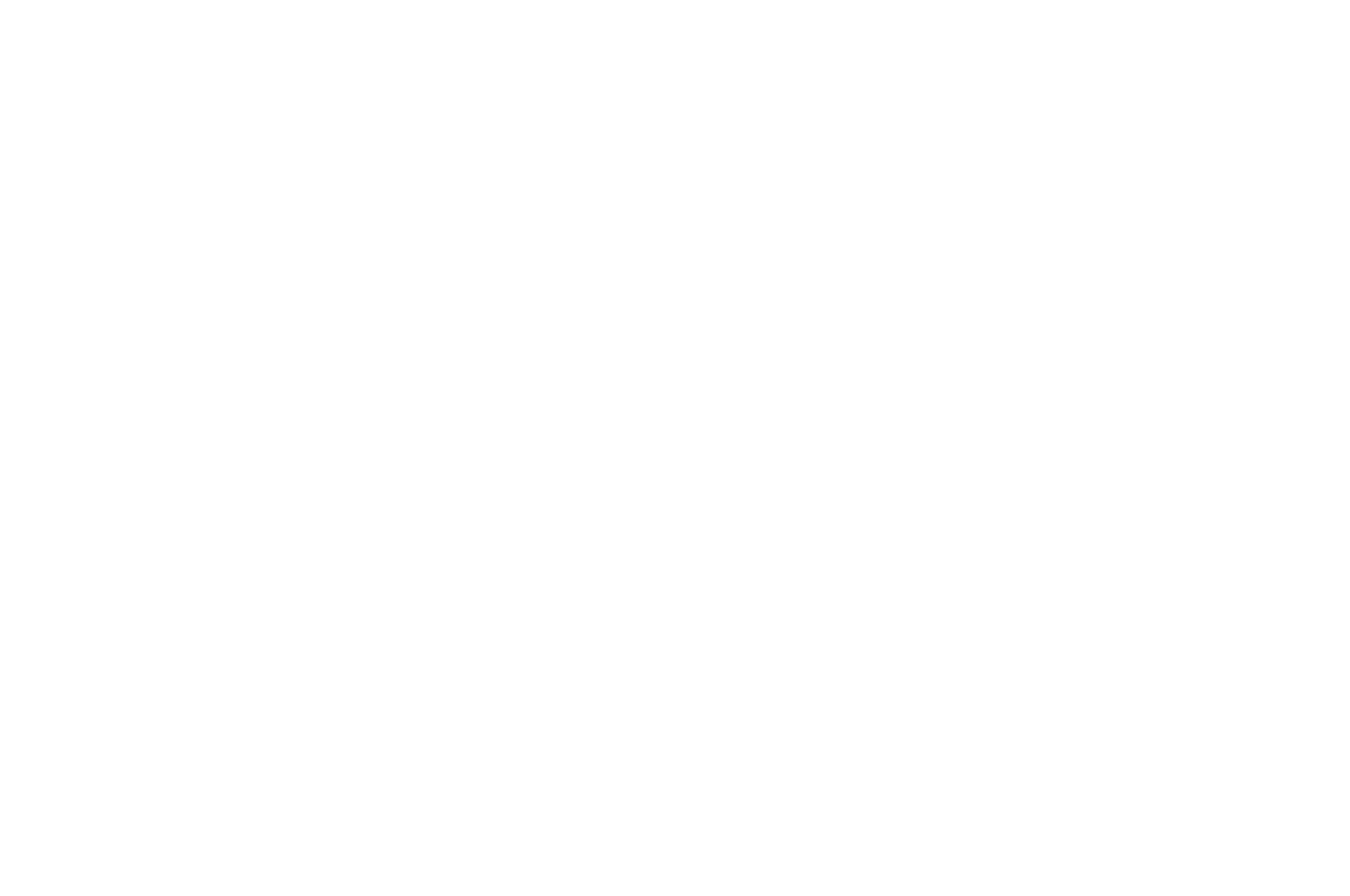 OFFICIAL SELECTION - UNAFF - 2017_white.png