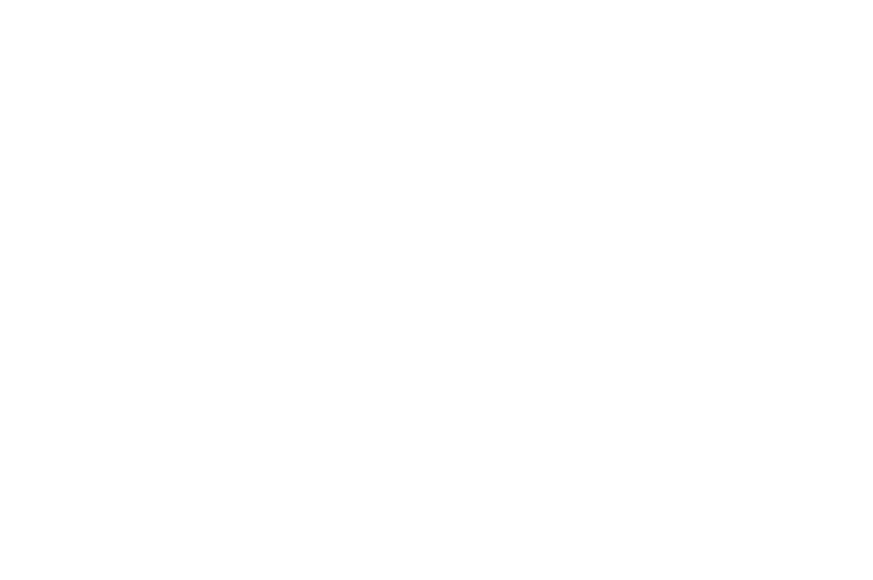 WINNER - Audience Choice Award - GI Film Festival San Diego - 2017_white.png