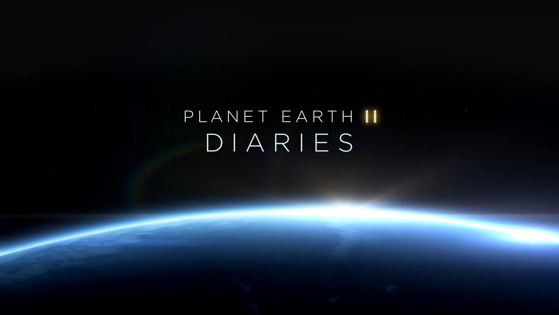 diaries_001_PEII_DIARIES_text_0106_1.jpg