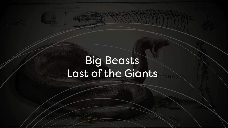 Big-Beasts-Title-Card.jpg