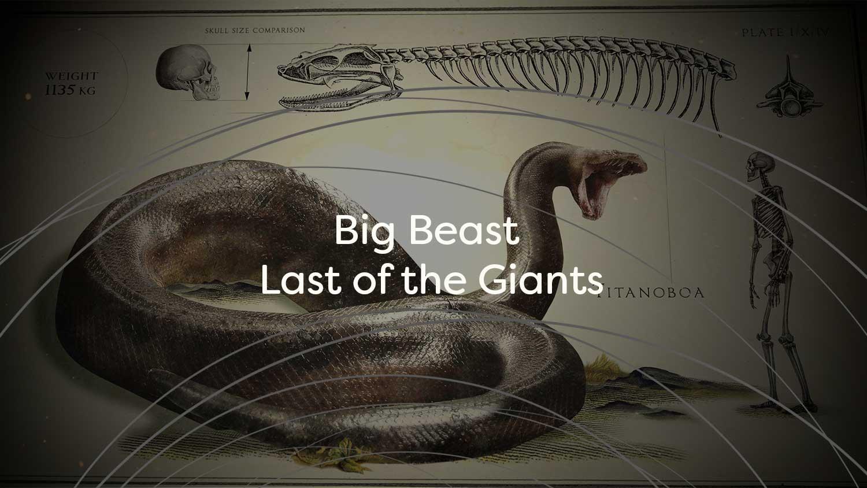 Big-Beasts-Title-Card-Test.jpg