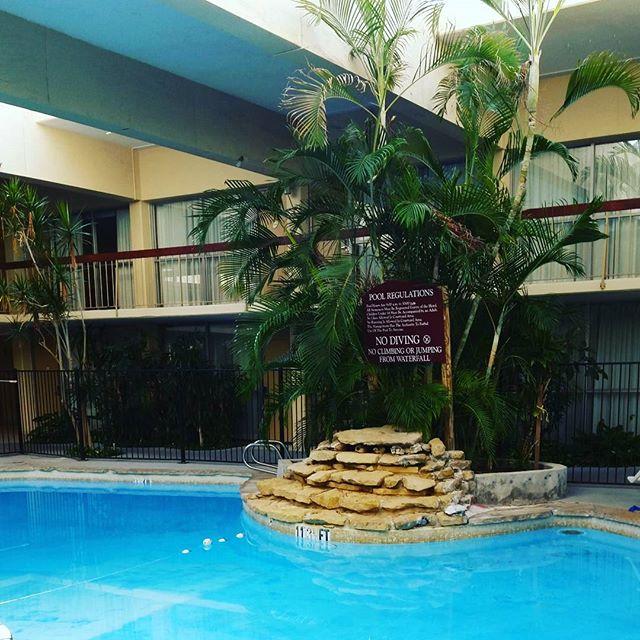 Tropical indoor heated pool! I'm going in #laquinta #roadtrip #cindysfreedomquest