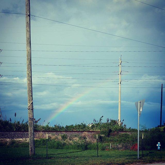 Rainbow!  #cindysfreedomquest #magic