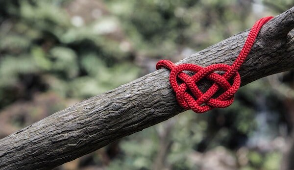 heartknot600.jpg