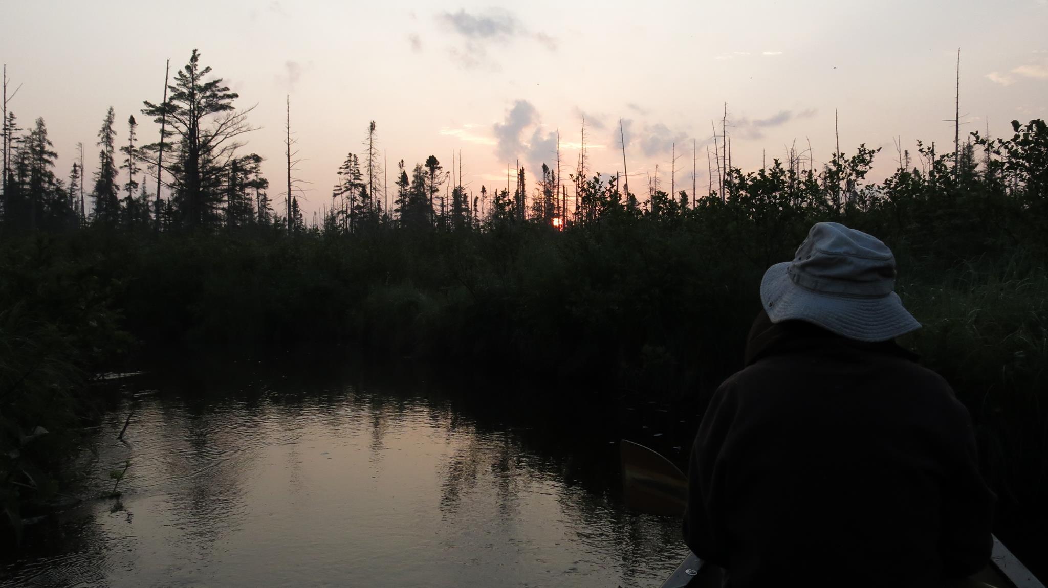 Sunrise in the boreal peatlands during the 2013 bird surveys.