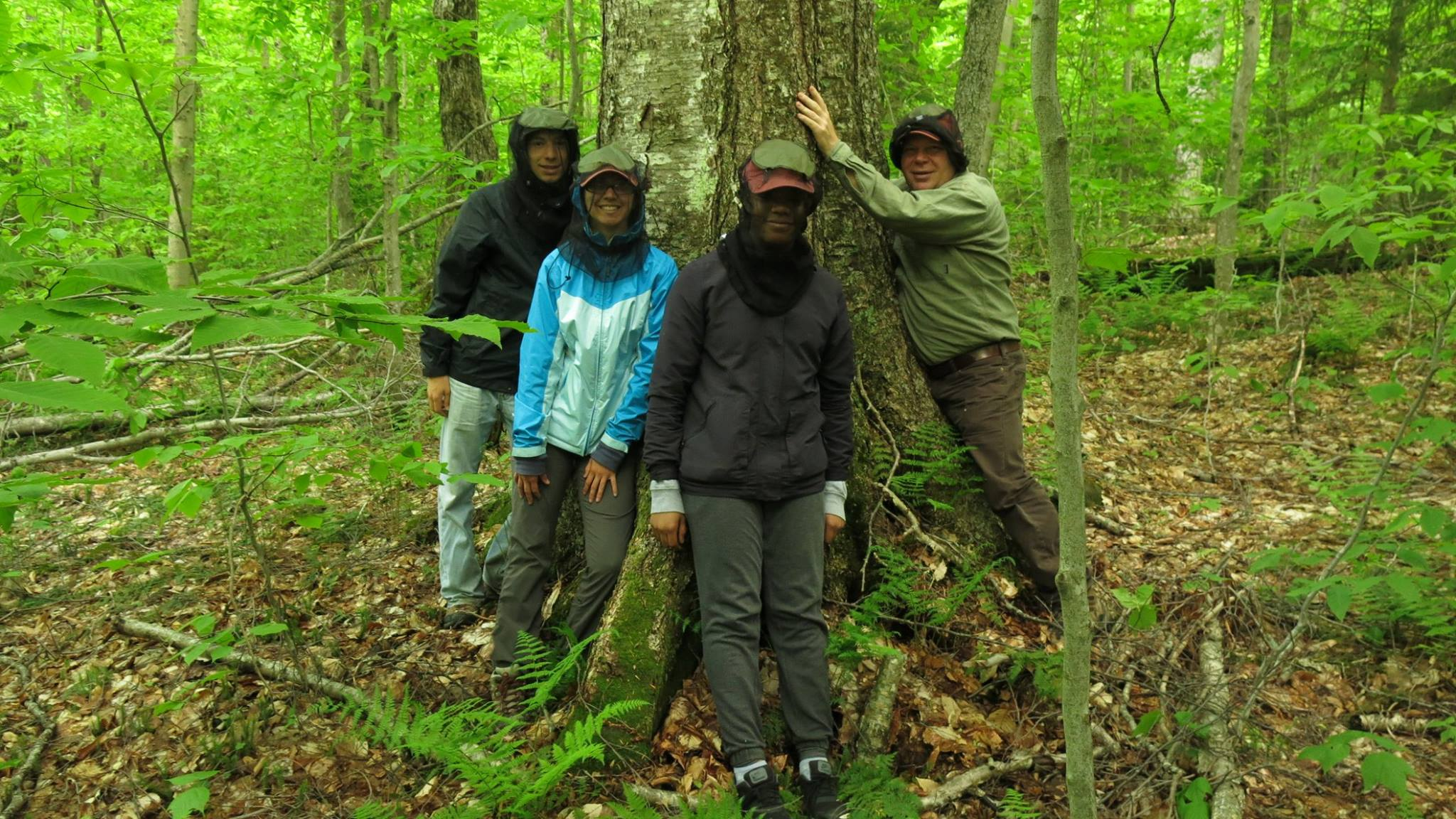 Skidmore undergraduate students visited the shingle shanty preserve working on a project on carbon sequestration