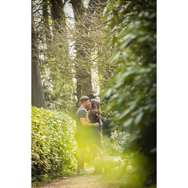 We're so excited to be photographing the wedding of @aimeejmartin and Mitch at @staplefordpark next weekend! We had fun getting to know them both while shooting their pre-wedding shoot @whattonhouse Gardens. • If you're getting married and need a wedding photographer, get in touch for a free consultation. Our prices start at £895 and our full day includes a pre-wedding shoot. • #leicesterweddingphotographer #leicestershirewedding #leicesterweddingphotographer #leicesterweddingphotographer #loughboroughweddings #loughboroughweddingphotographer #whattonhouseandgardens #staplefordpark