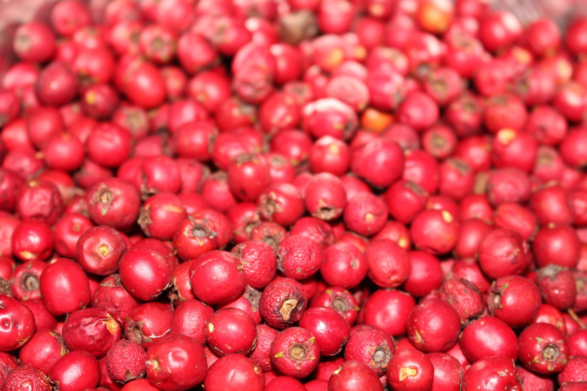 Hawberries (Photo:  Locavore Inventions )