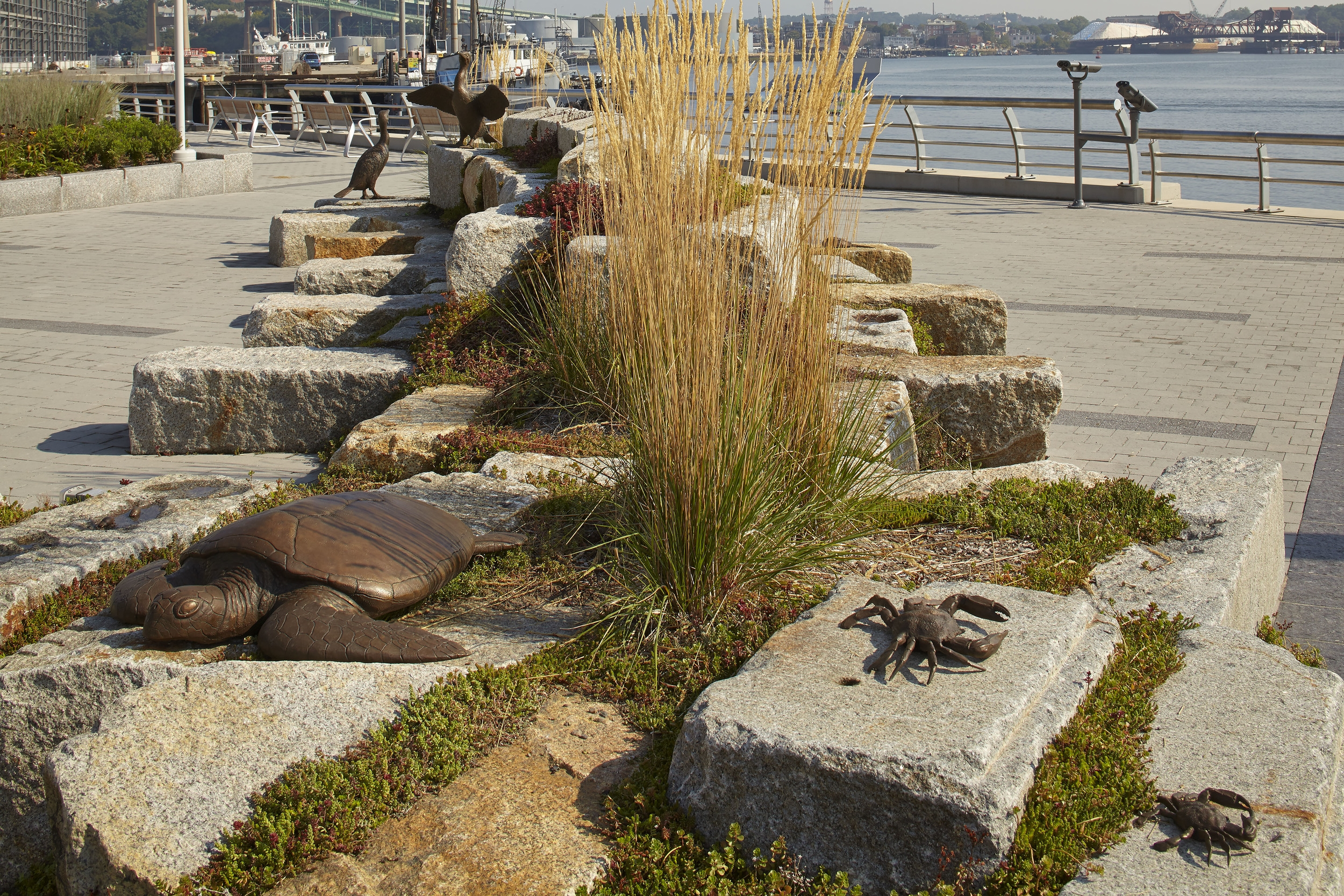 Various tidal stream creatures |bronze