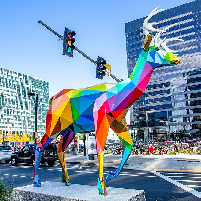The Boston Seaport is looking a lot more colorful these days! It was so fun working with @seaportbos to unveil these amazing sculptures to Boston and beyond!  AIR SEA LAND  7-piece public sculpture installation along Seaport Blvd By Okuda San Miguel Curatorial descriptions by Suzi Hlavacek and Kim Curhan, Boston Art  @okudart #Airsealand curated by @justkidsofficial for @seaportbos with @bostonartinc 📷: @seaportbos
