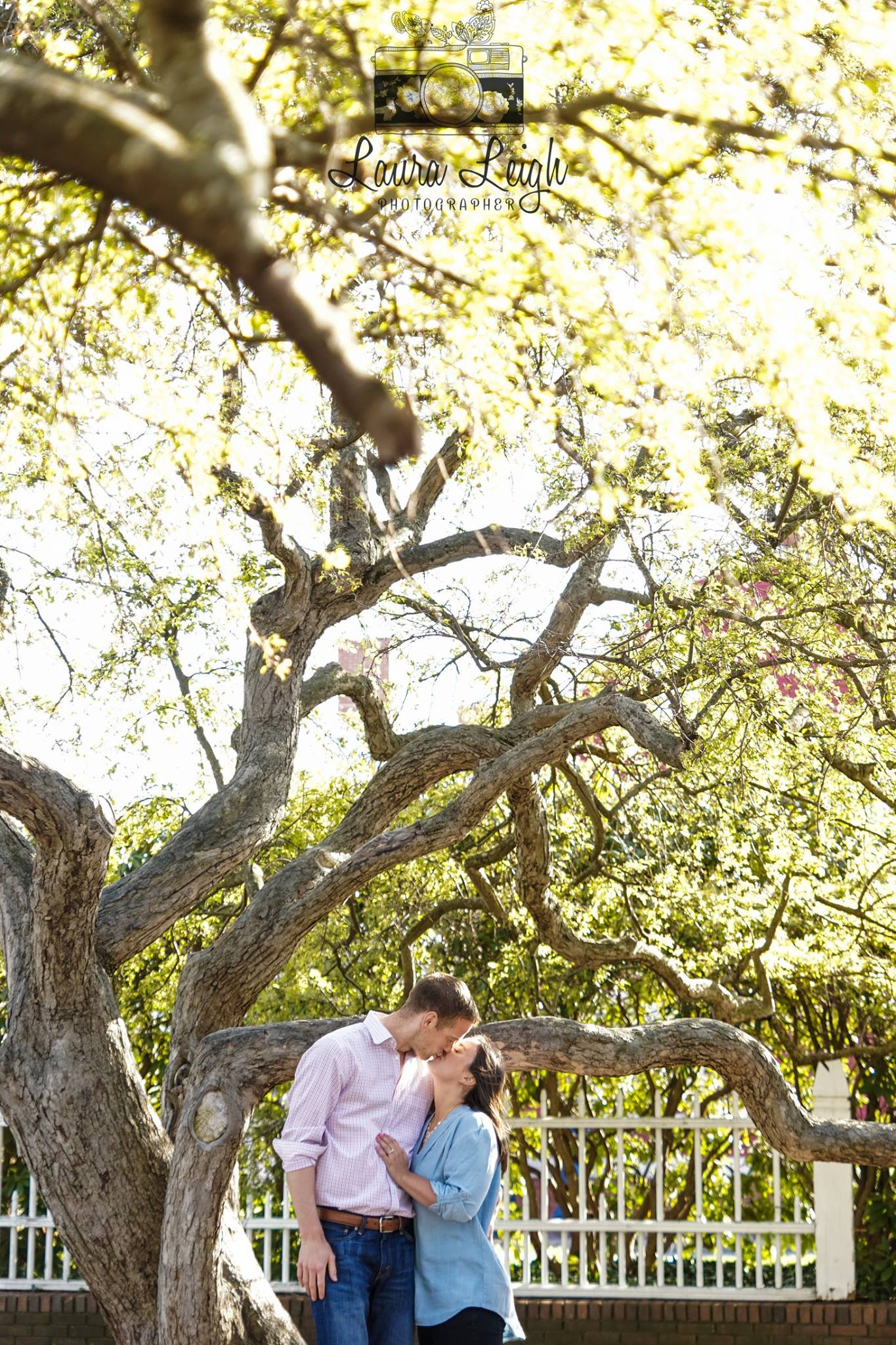 laura leigh photo couple under tree