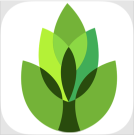 garden answers plant id app for wedding flowers