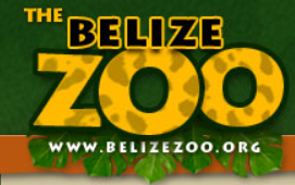 belize zoon.png