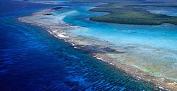 barrier reef.png