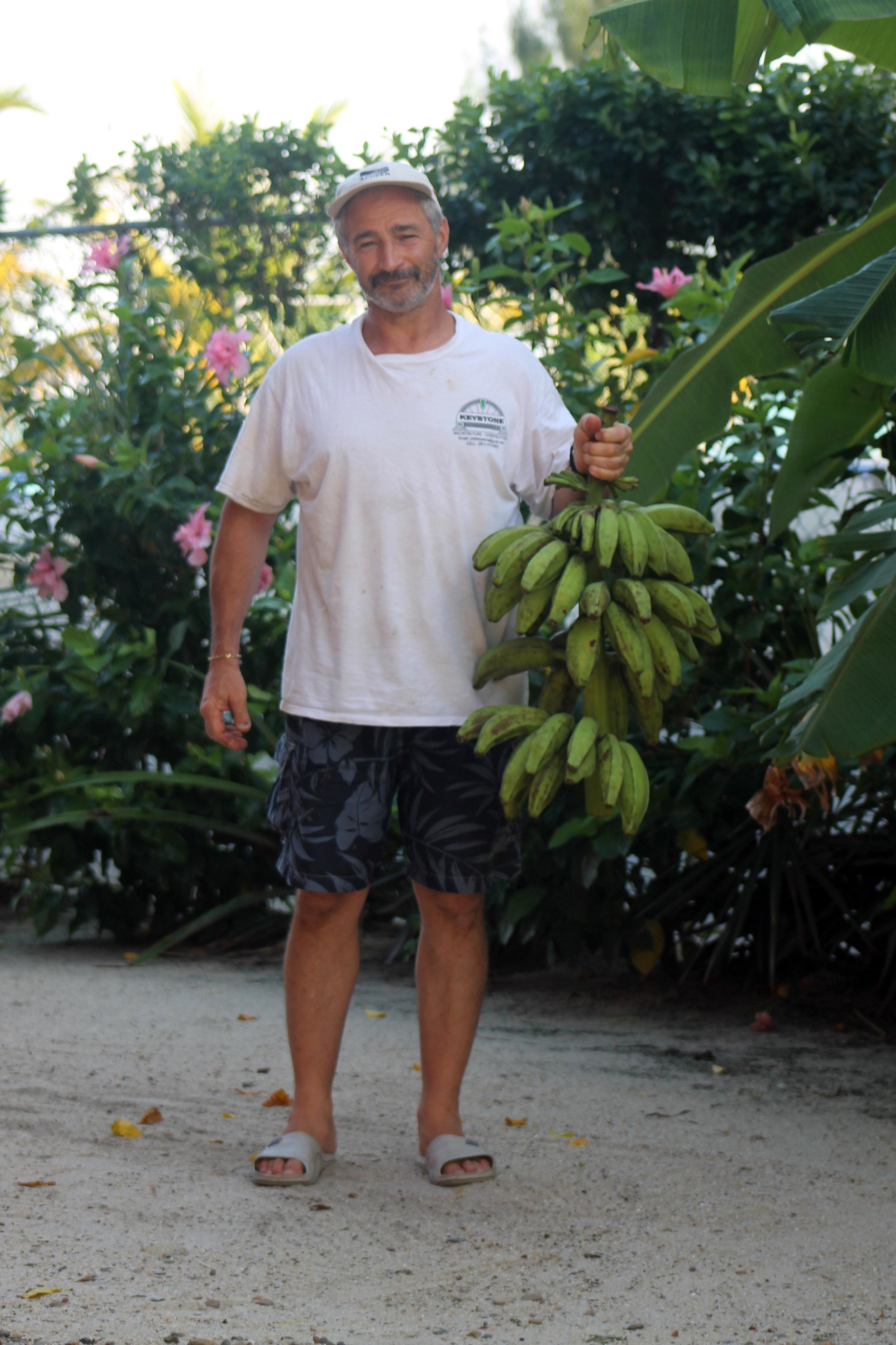 aaa_jimmy plantain.jpg
