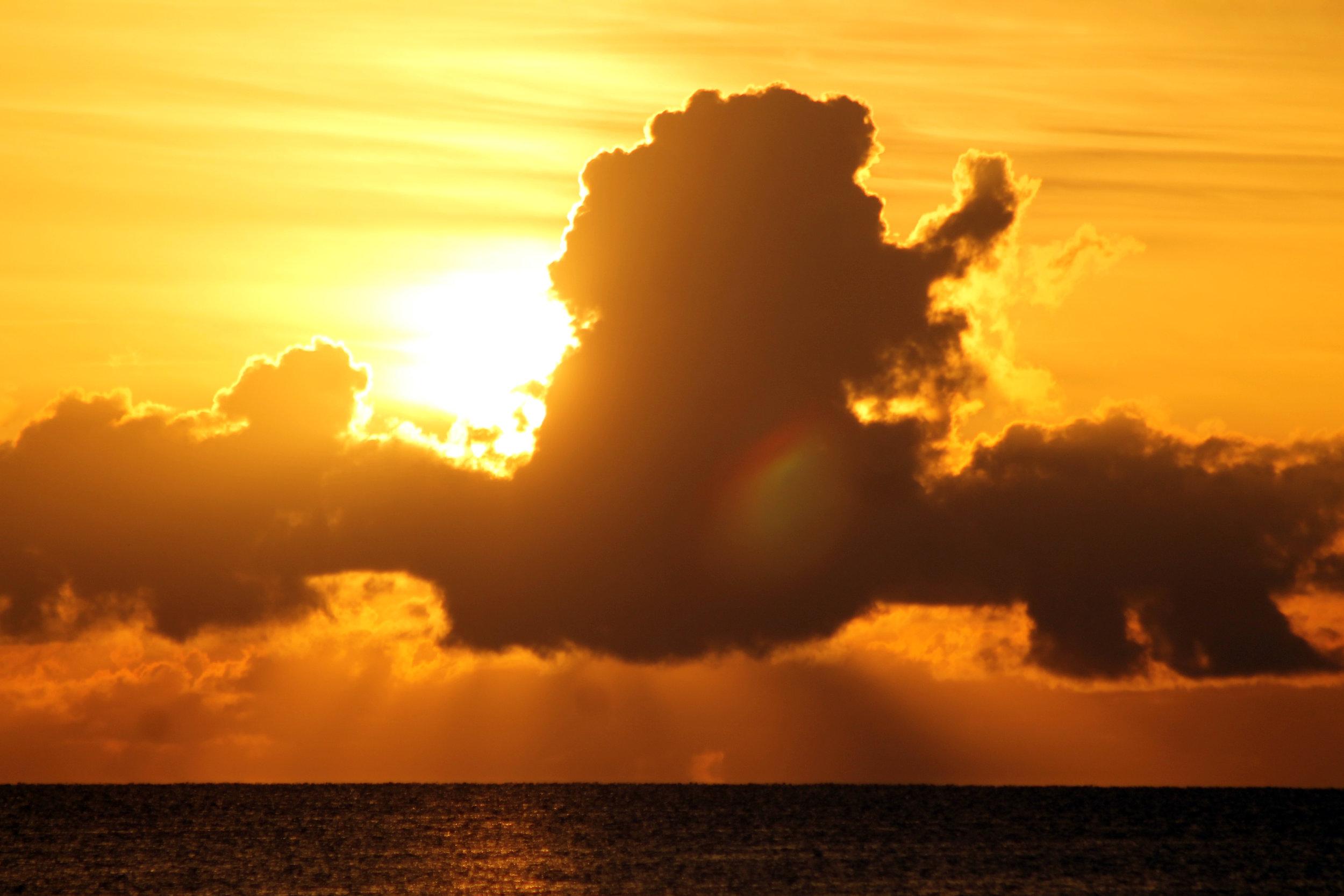 aaaa_Jimmy_Morning Sun.jpg