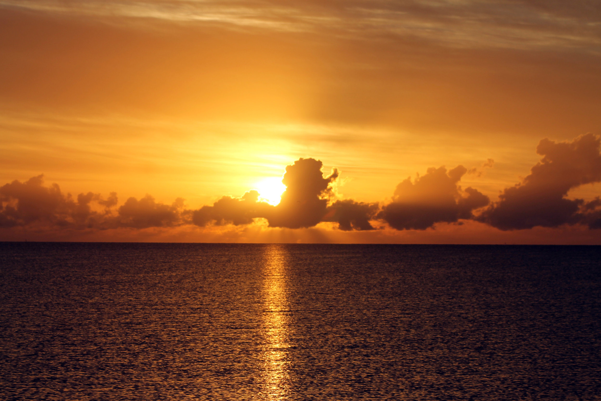 aaaa_Little Jimmy Sunrise.jpg