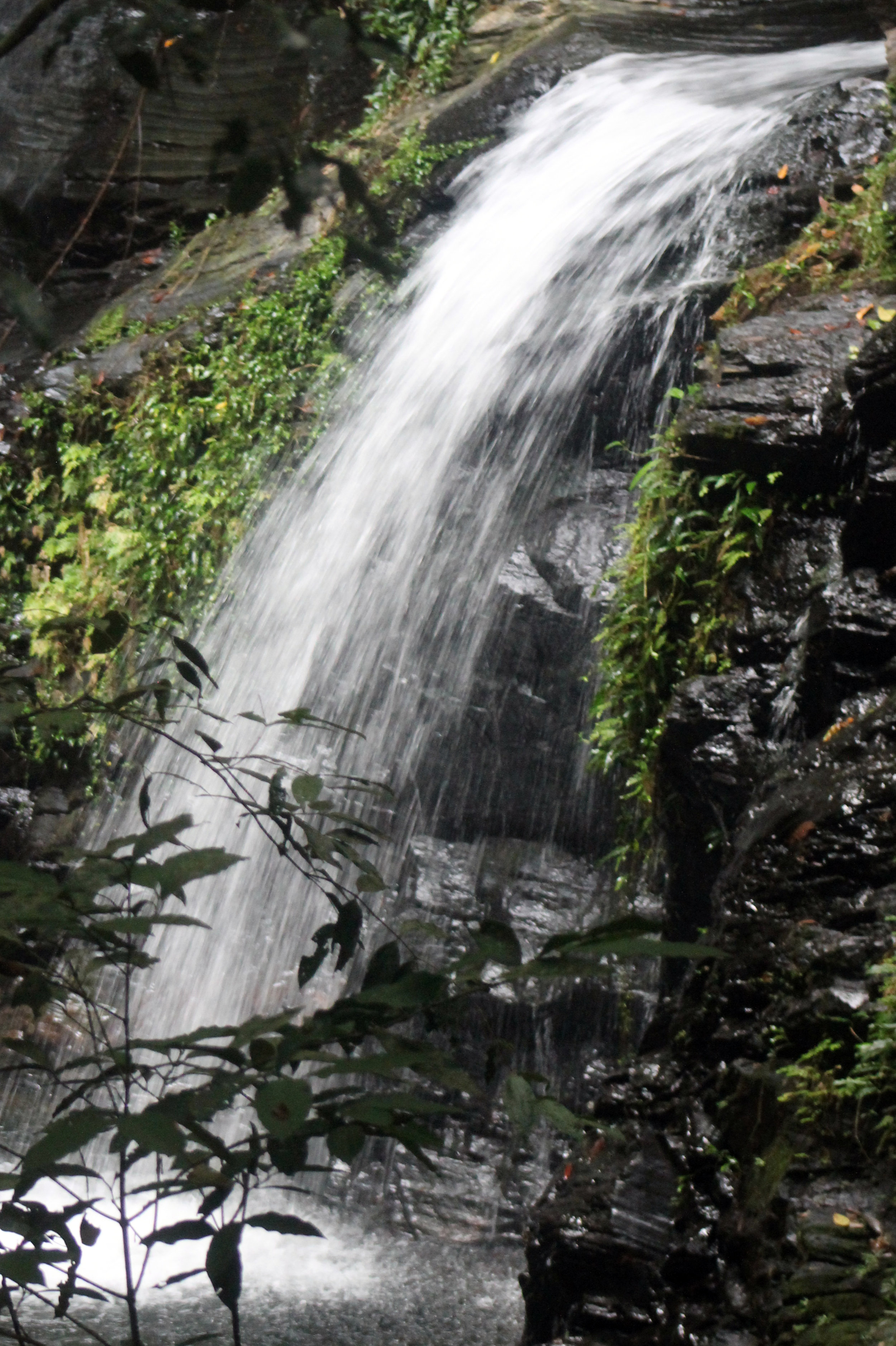 Waterfall Mayan Statue IMG_4474.jpg