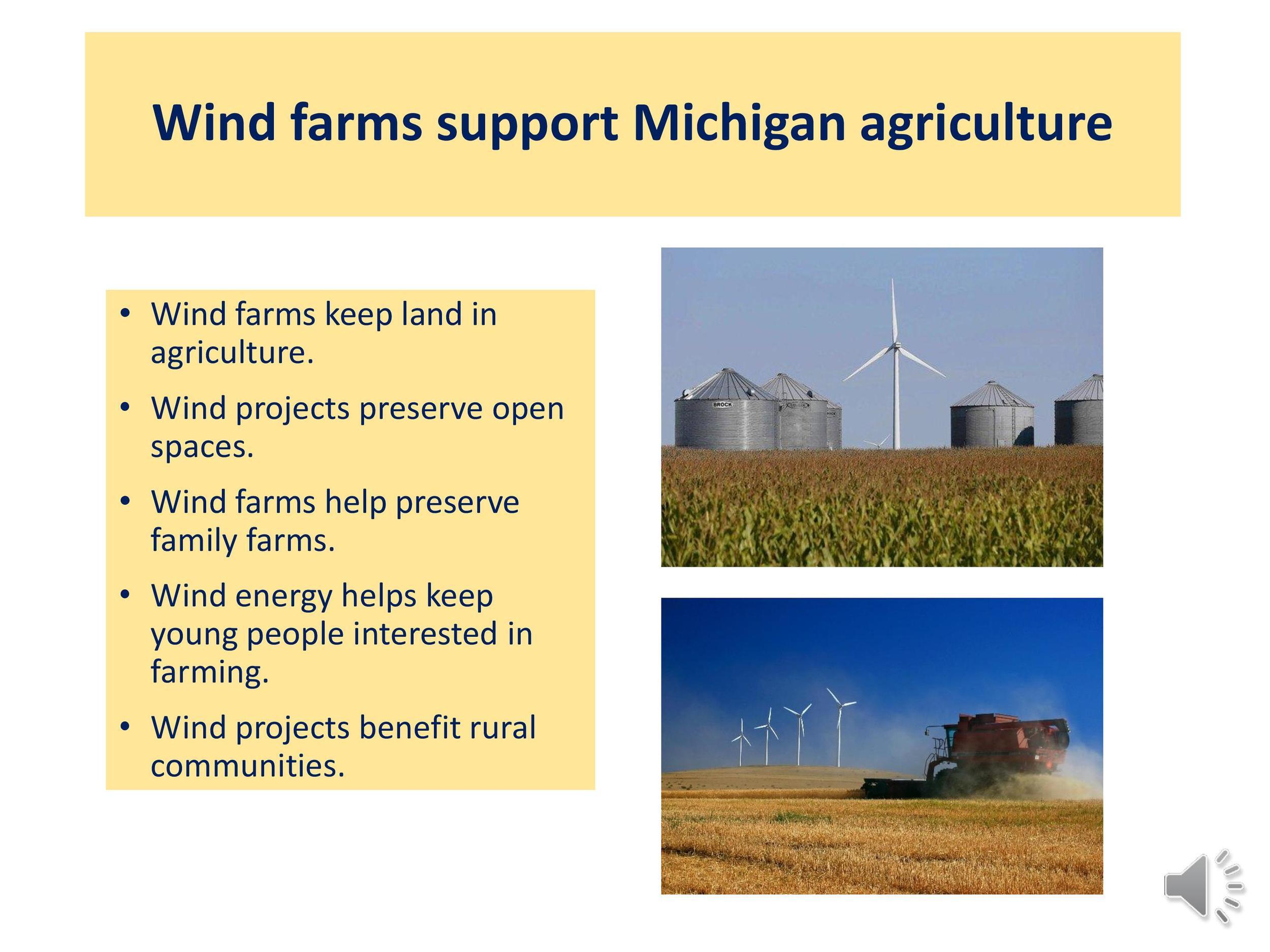 Wind Energy in Tuscola-page-021.jpg