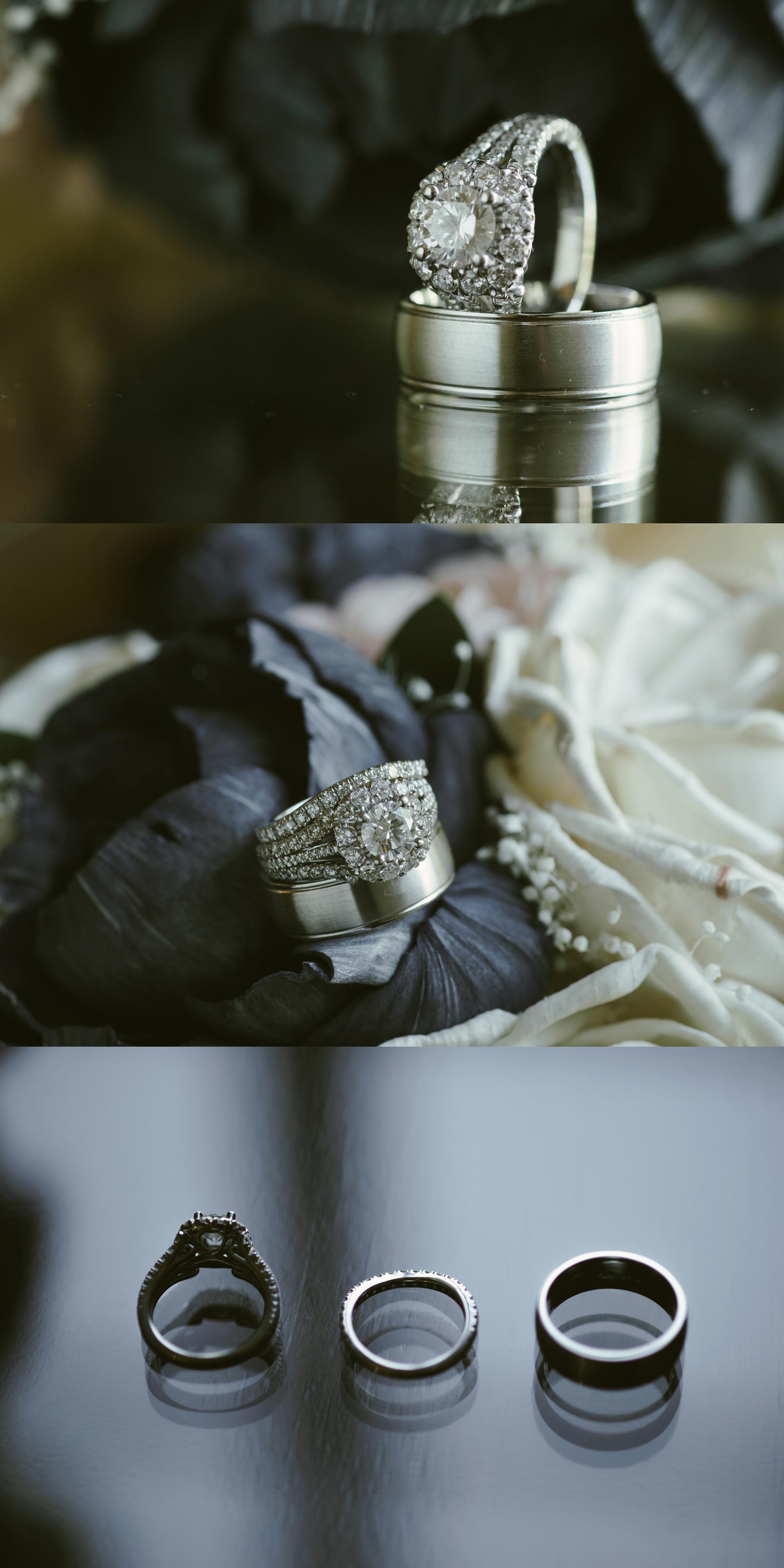 036 kaitlyn-colin-notre-dame-wedding.jpg