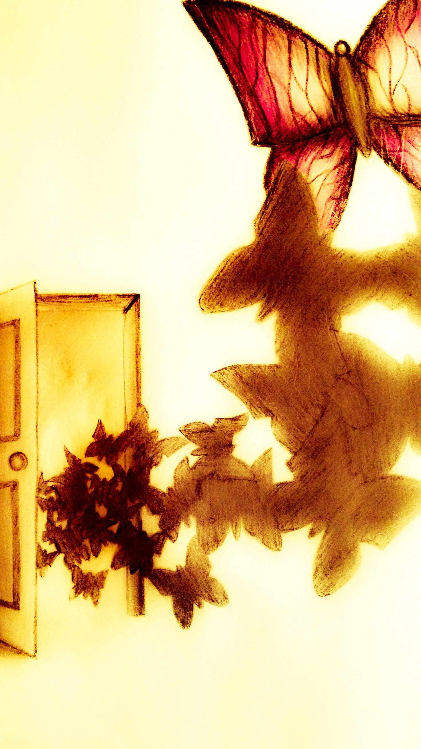 cropped-butterflydoor.jpg
