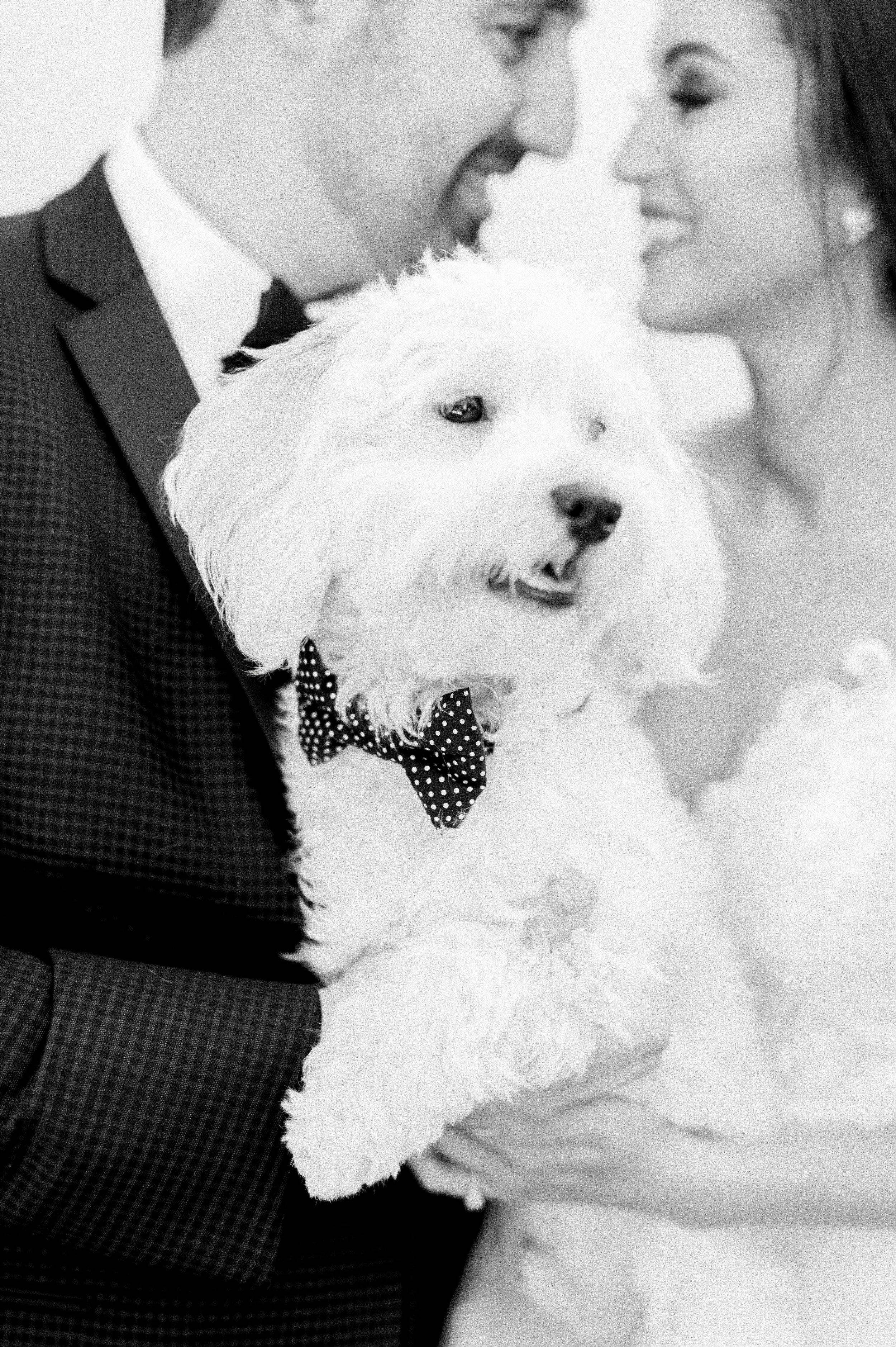 Nick and Erica Wedding at El Chorro-9763.jpg