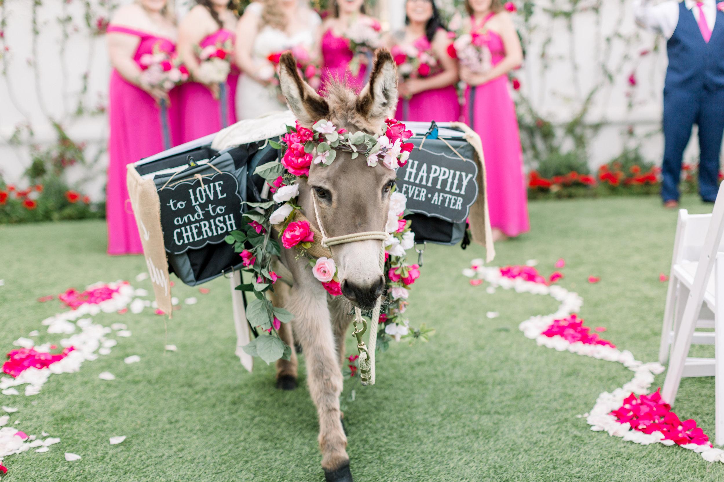 2019.03.30 Roxanne & Brandon Wedding  426.JPG