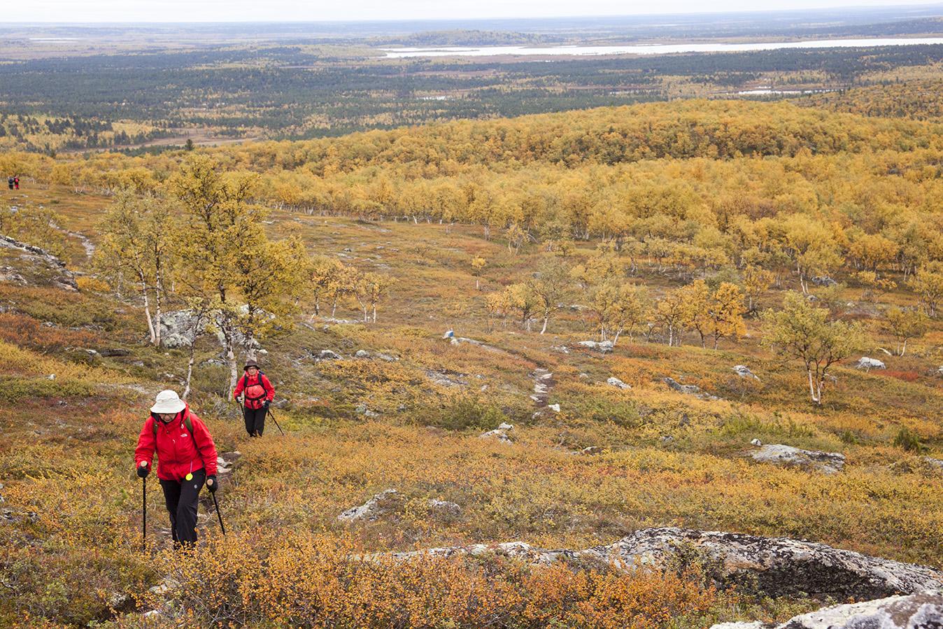 The most stunning view from Urho Kekkonen National Park