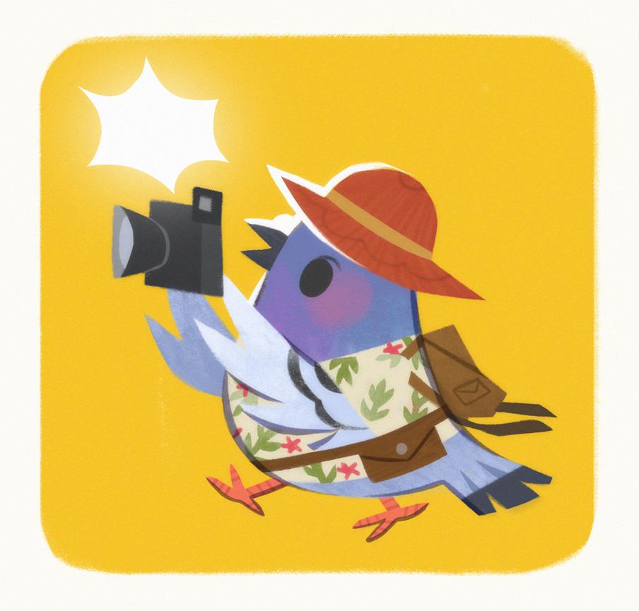 pigeon_tourist2.png