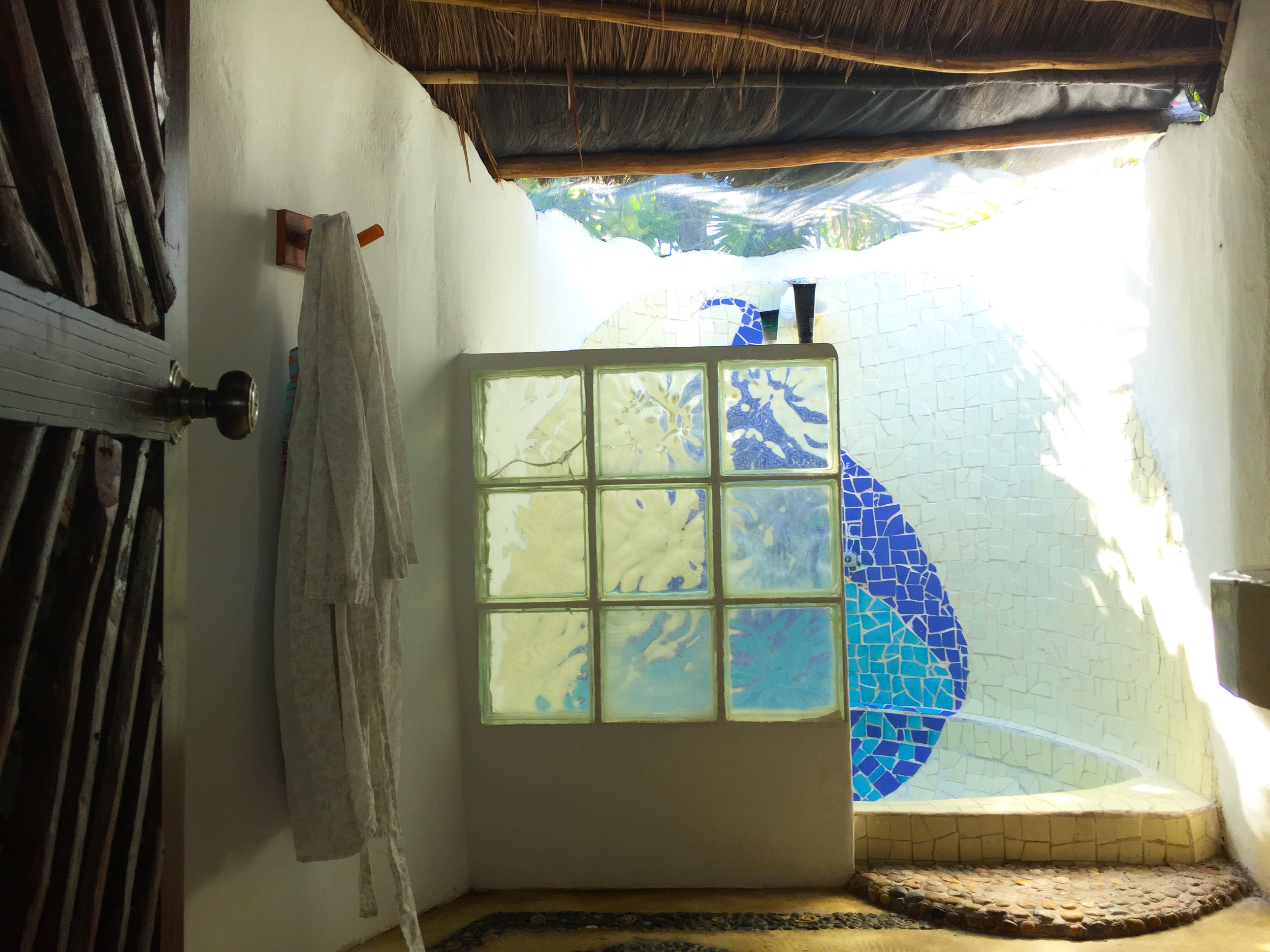 This was the shower. And yes, that is a screen to the open air above.