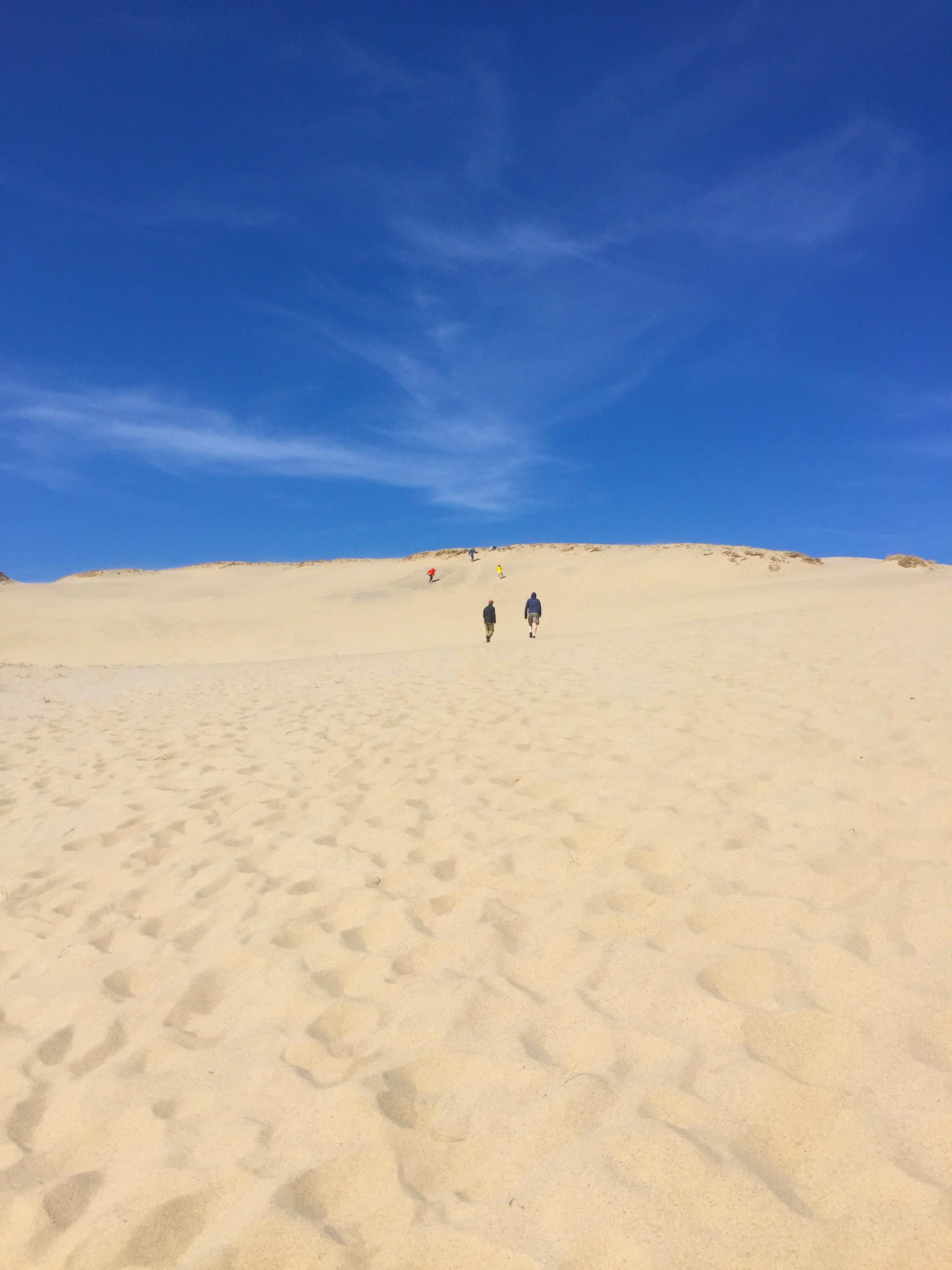 Dunes 2.jpg