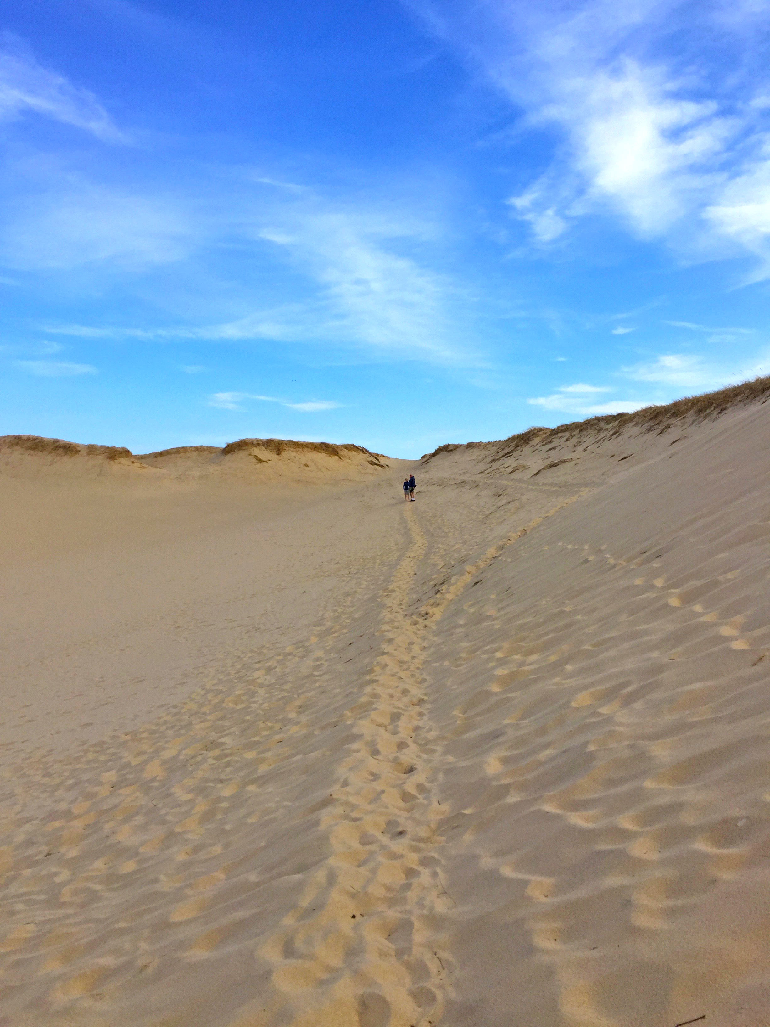 Dune 3.jpg