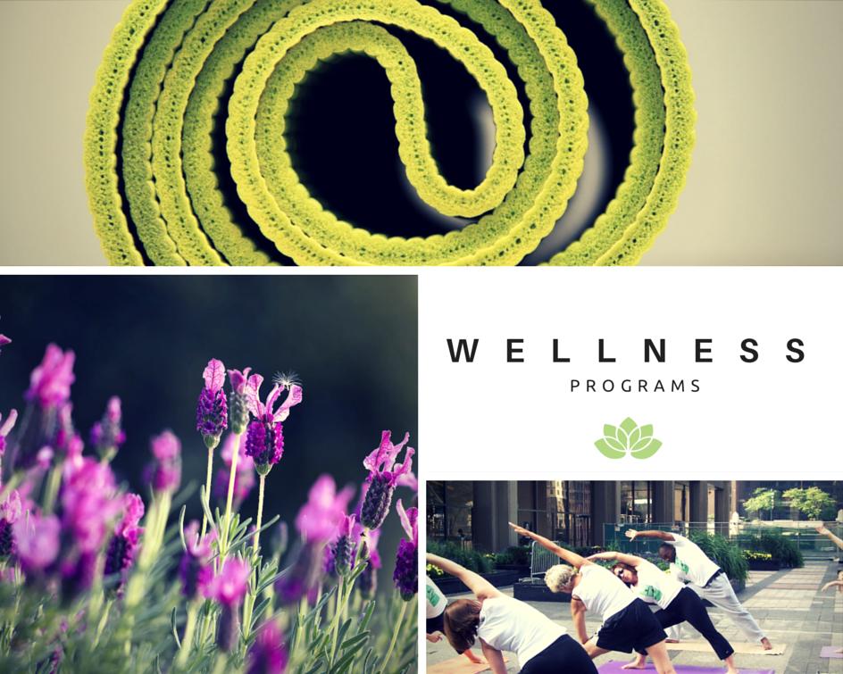 yoga retreats and workplace wellness programs