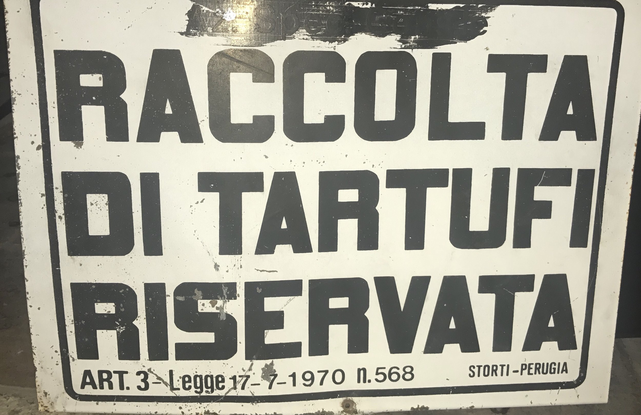Cartello raccolta tartufi.jpg