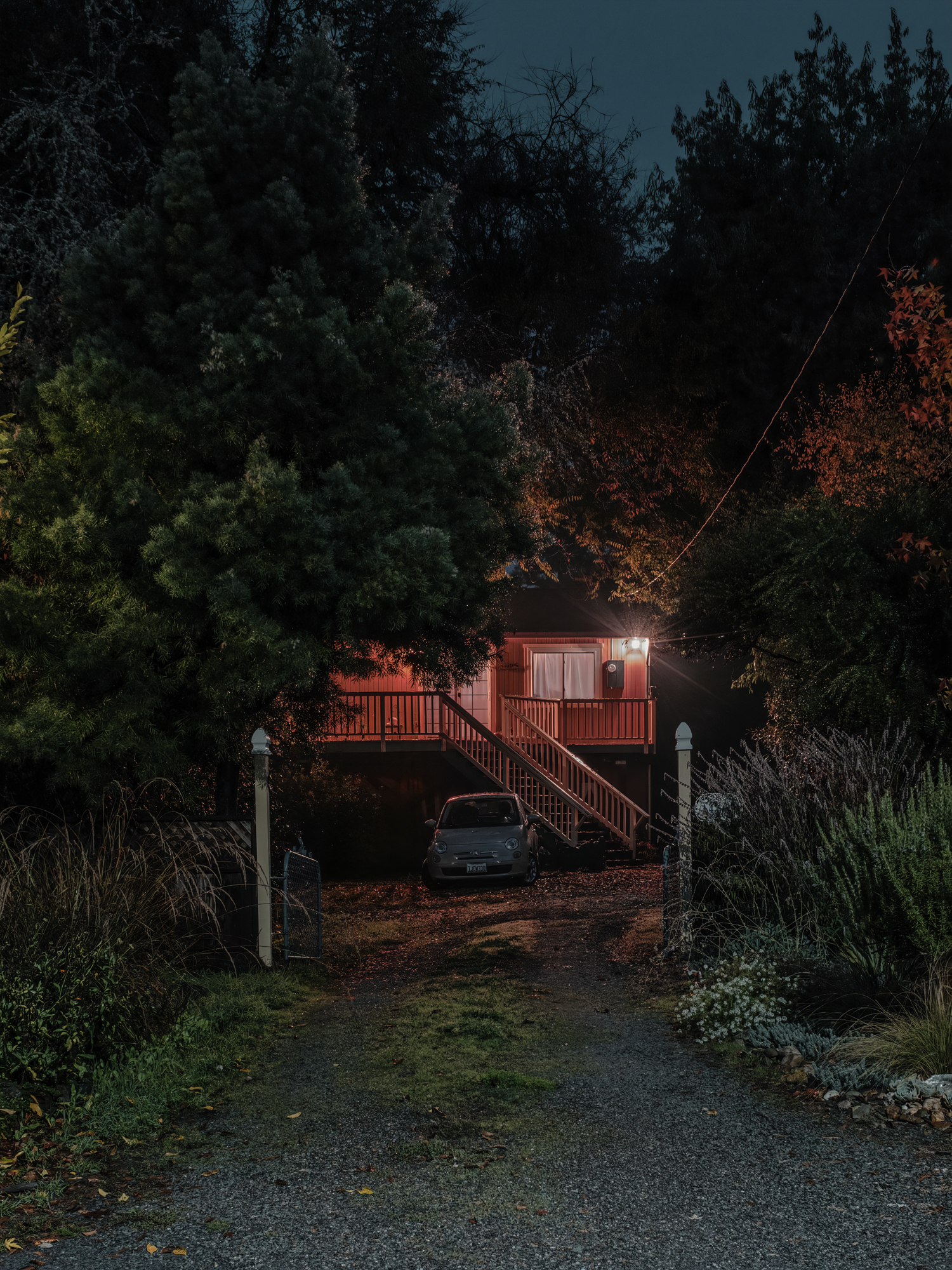 Tree House, Guerneville, CA, 2018.  Archival Pigment Print.   Pricing & Edition Info