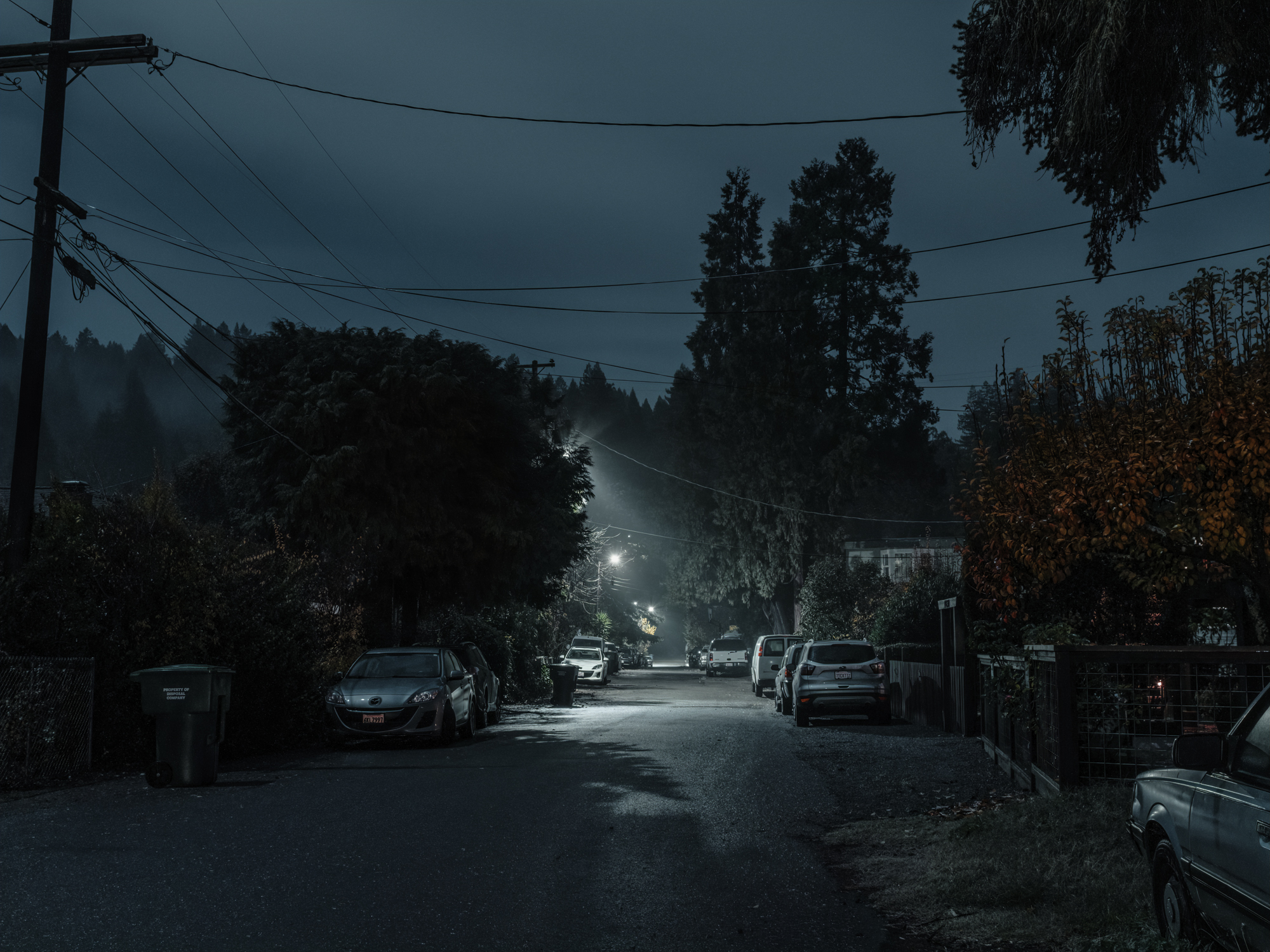 View down Eastern Ave, Guerneville, CA, 2018.  Archival Pigment Print.   Pricing & Edition Info